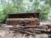 firewood_01