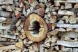 firewood_09