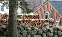 firewood_10