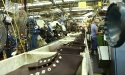 red_wing_shoe_boot_factory_12
