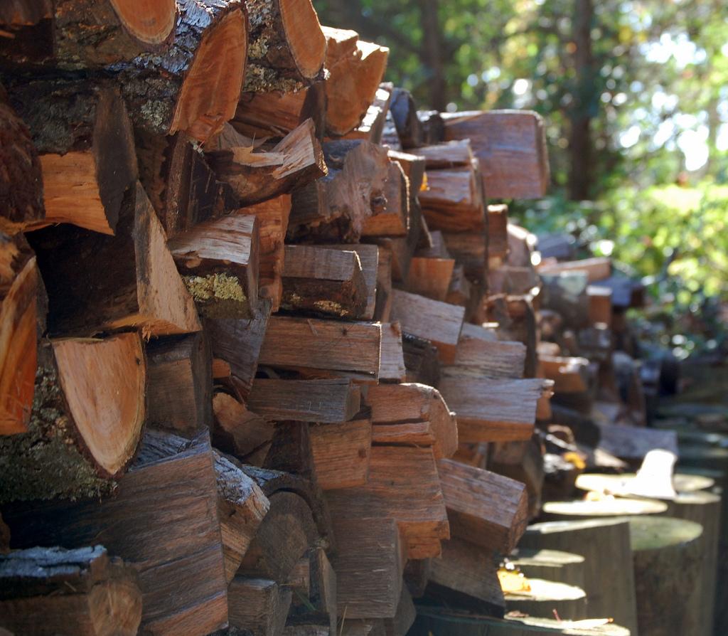 Firewood_40