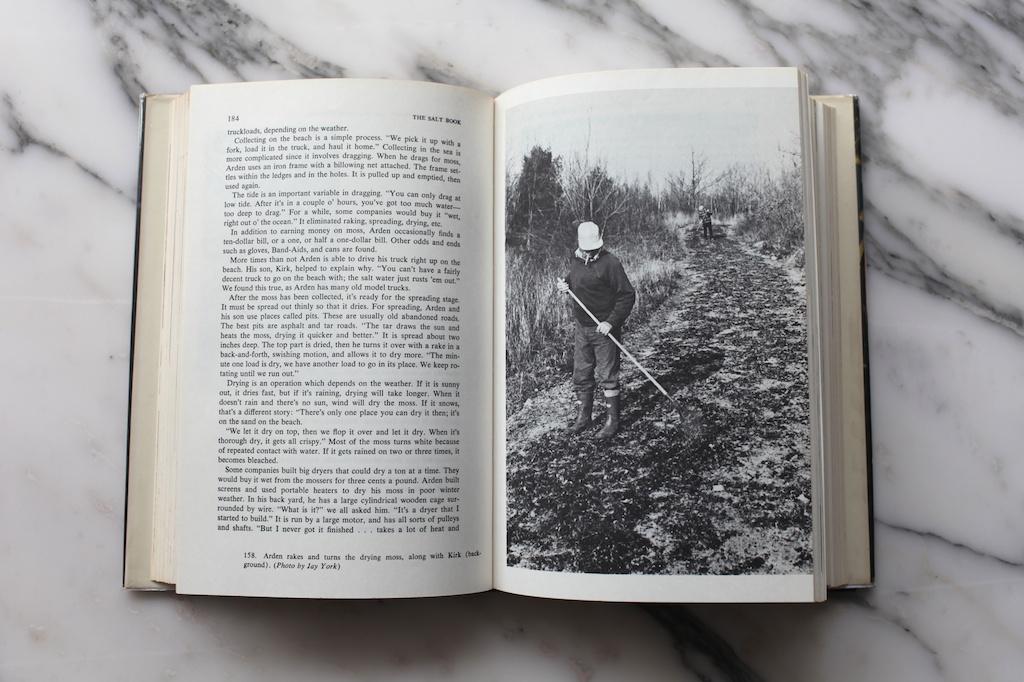 salt book 6